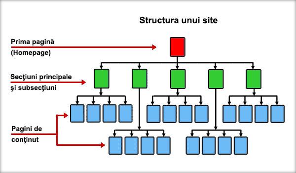structura-unui-site