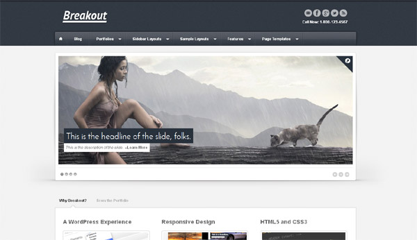 Wordpress-Theme-4